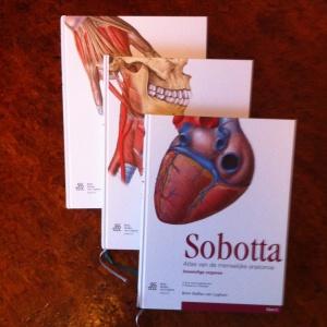 textual 2011 - Sobotta